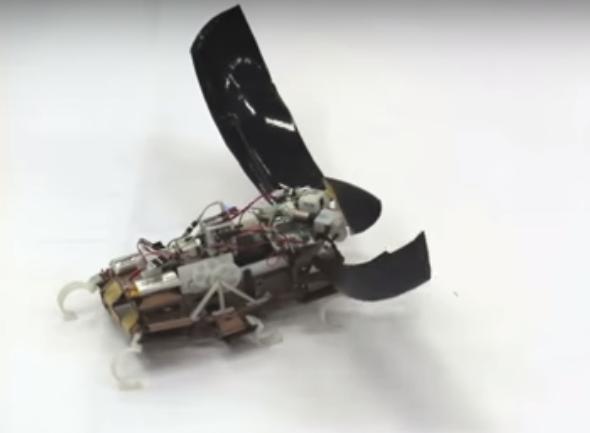 Robot Roach Can Jump Up To Five Feet High