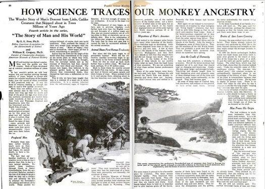 Monkey Ancestry: June 1923