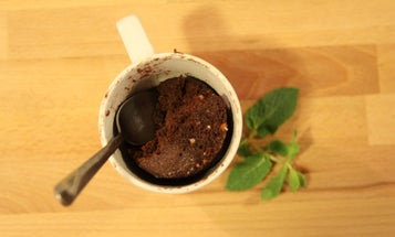 Add a dash of chemistry for the best microwave mug cake of your life