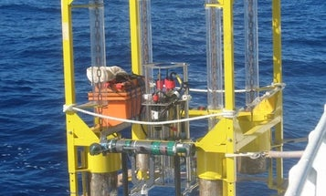 Mariana Trench Full Of Microbial Life, Expedition Finds