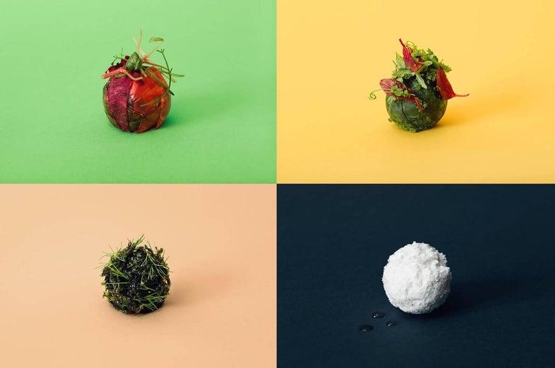 Imagining Future Meatballs