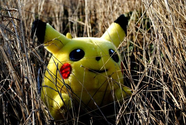 Pokémon Go Players Are Actually Helping To Rescue Wildlife