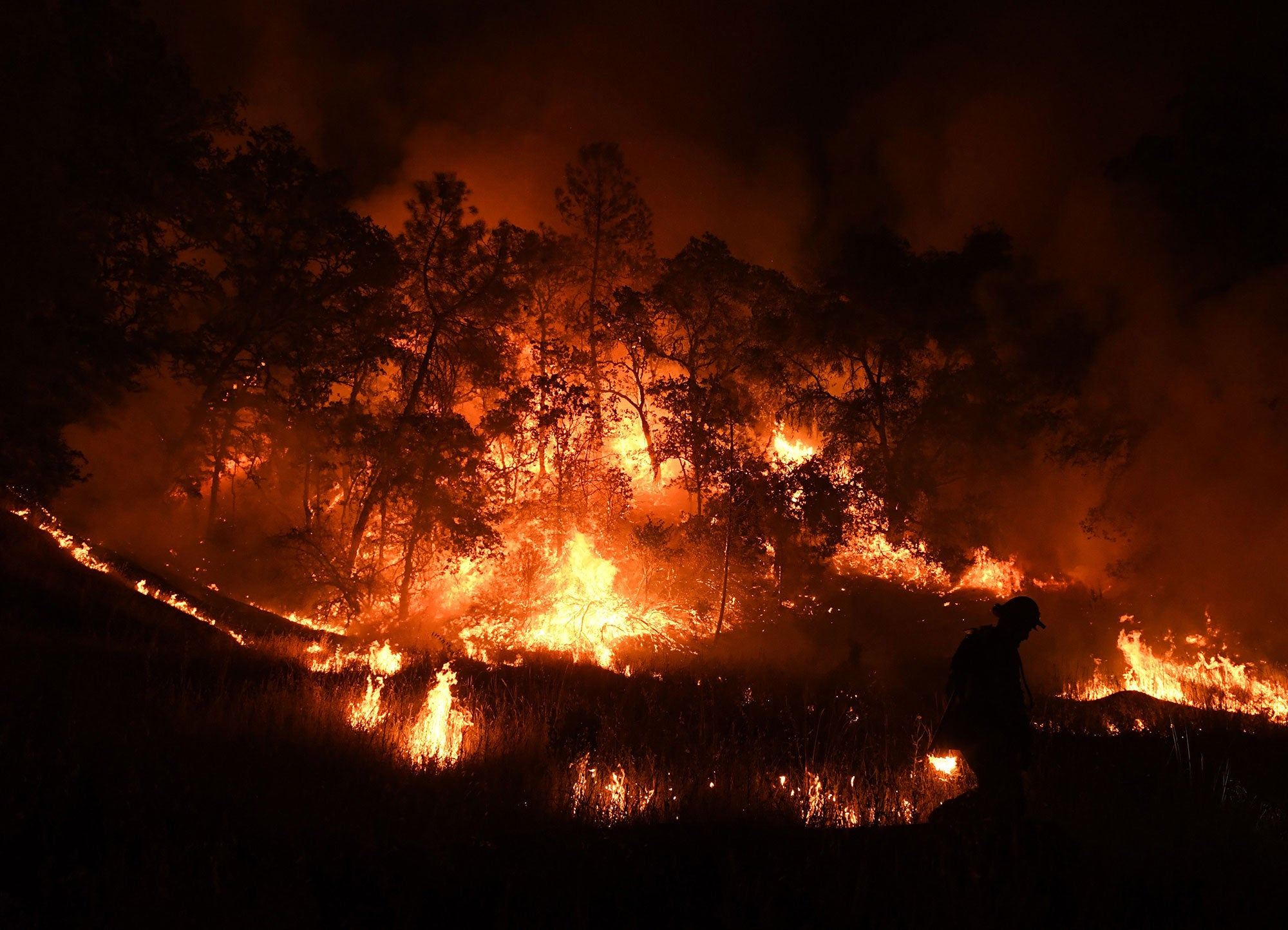 How parched states like California fight wildfires
