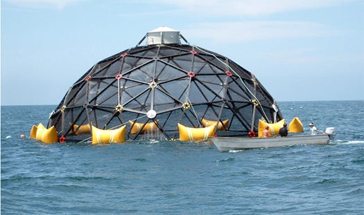 Giant Free-Roving Robotic Cages Could Be the Healthy Future of Fish Farming