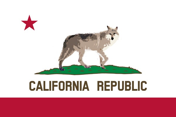 The Wolf's Controversial Return To California