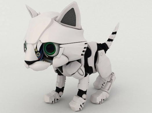 How The CIA Tried To Turn A Cat Into A Cyborg Spy