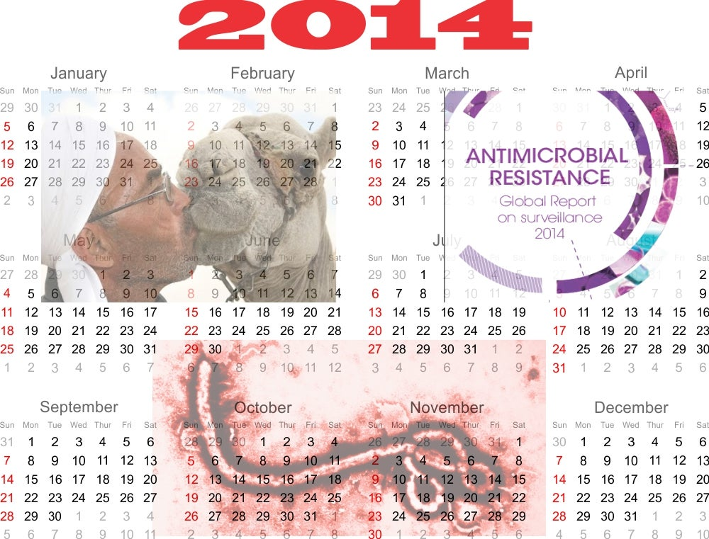 2014: Epitomizing Our Dysfunctional Relationship With Germs