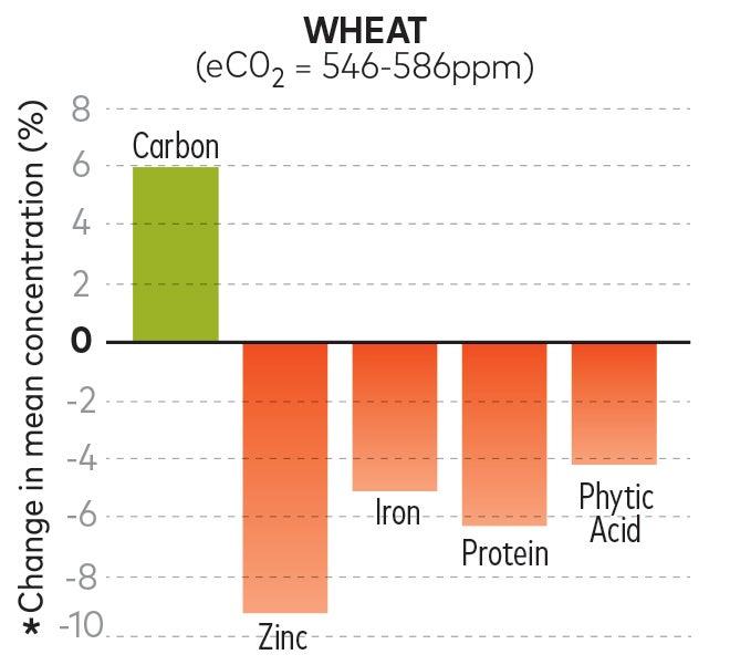 future wheat nutrition chart