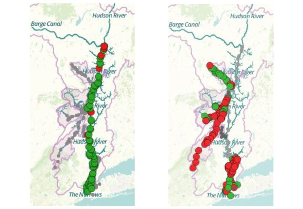 Most of the main stem of the Hudson River tested within limits for safety in August 2016 (left). Hudson River tributaries tend to have more fecal contamination. Red dots show areas in tributaries wher