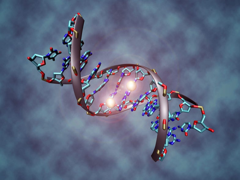 Could Having Your DNA Tested Land You In Court?