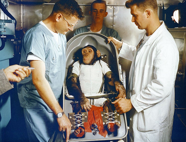 Update: Iran Tried and Failed to Launch a Monkey Into Space Last Month
