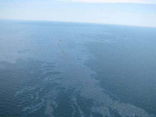 Underwater Survey Finds Volume of Leaked Oil Unprecedented 'in Human History'