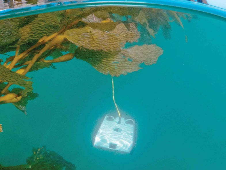 An Underwater Drone For The Everyday Cousteau