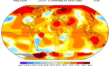 May Was The Hottest May On Record