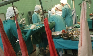 HIV-Positive Patient To Receive Organ Transplants From HIV-Positive Donor