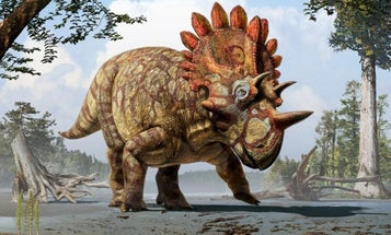 'Hellboy' Dinosaur Discovery Leads To Marriage Proposal