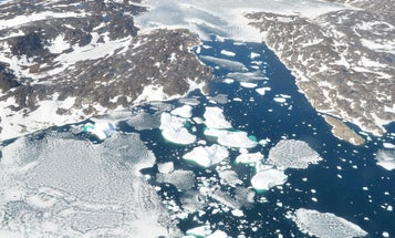 Saving Greenland could save the world