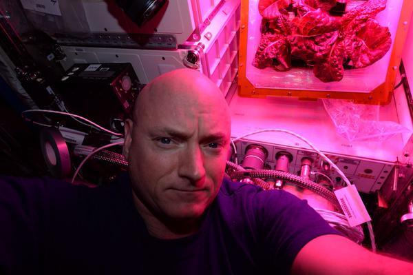 Selfie taken by Astronaut Scott Kelly with Space Station-Grown Lettuce