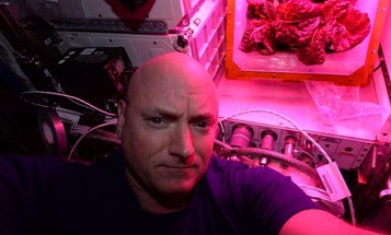 What Do Astronauts Dream?