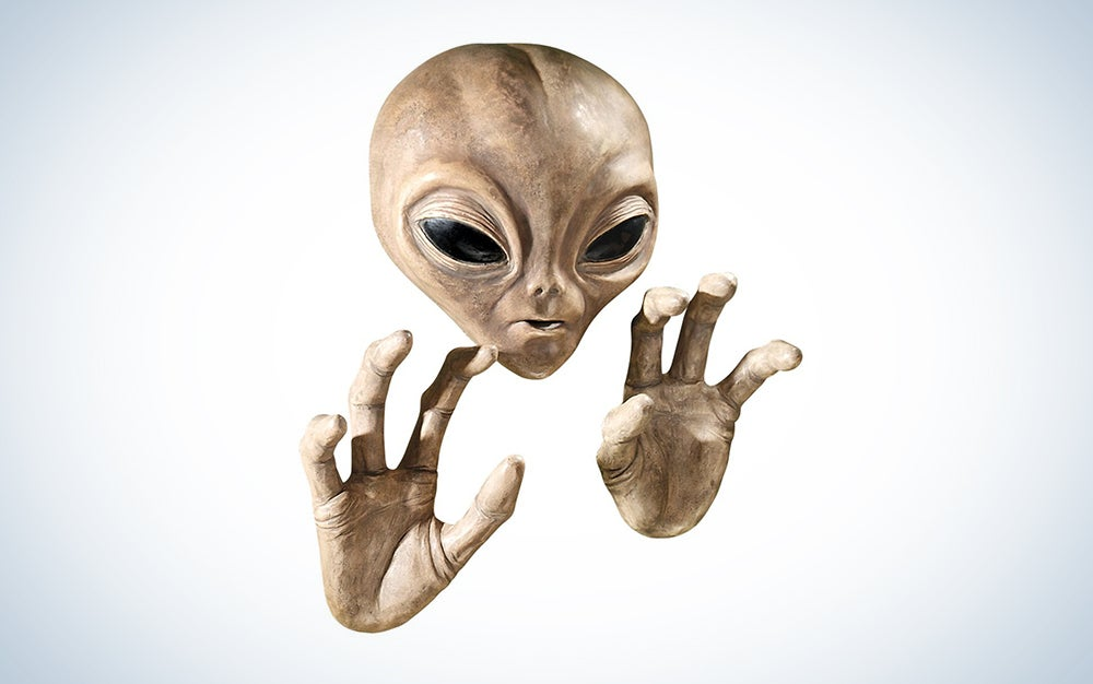 Sorry, but Anonymous has no evidence that NASA has found alien life