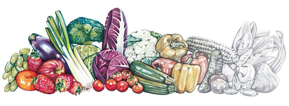 produce nutrition illustration