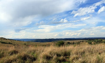 How South Africa's 'Cradle of Humankind' got the title