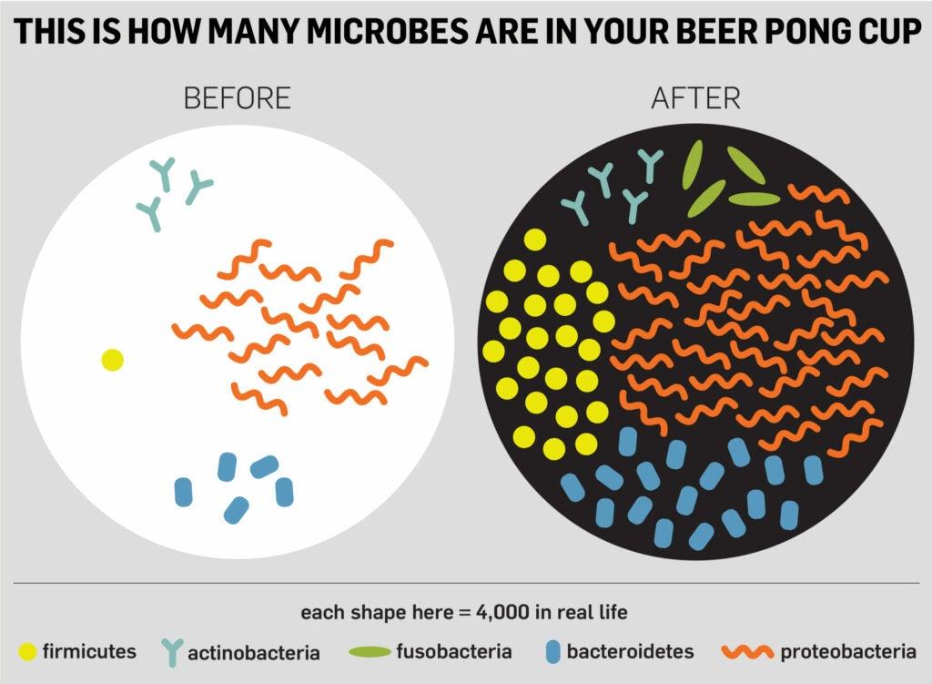 Beer Pong Microbes (RGB)