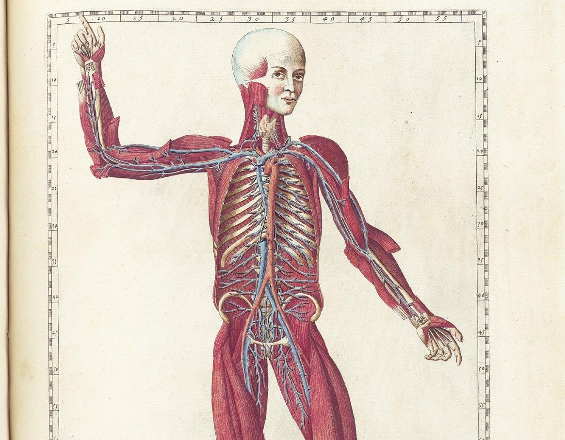 Doctors Vacuum A 2-Foot-Long Clot Out Of Man's Leg