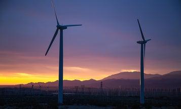 Desert critters avoid noisy wind farm turbines