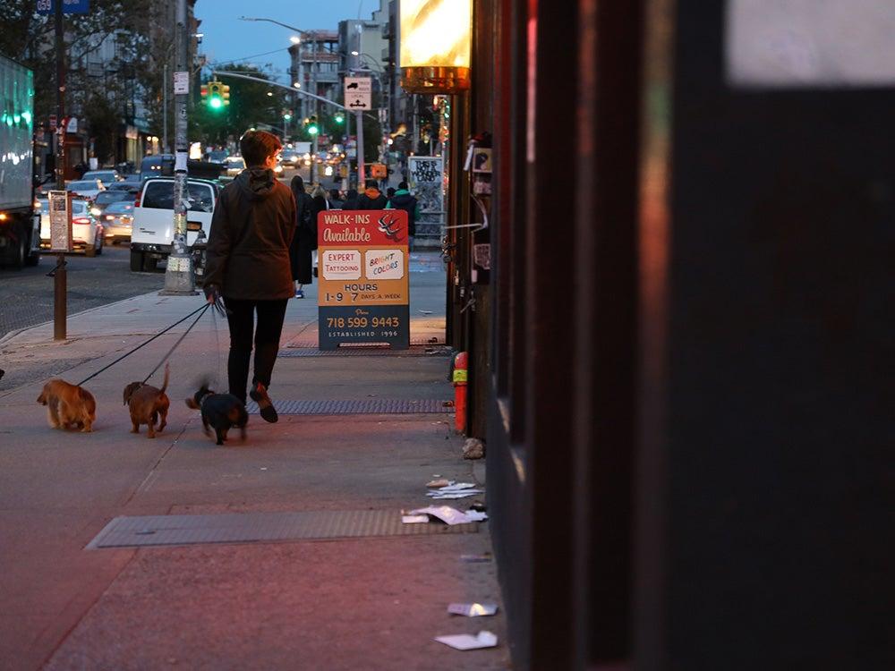 walking dogs down city street