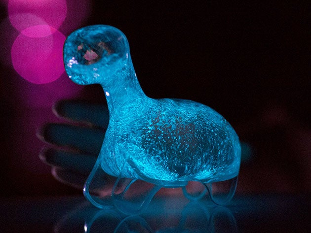 Bioluminescent Dino Pet