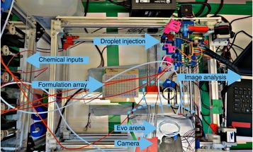 Robotic Experiment Recreates Evolution In Oil And Water
