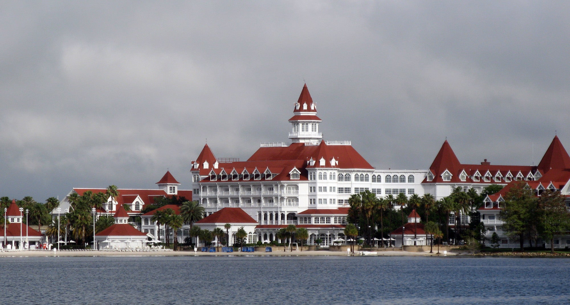 What We Can Learn From The Disney Alligator Attack Tragedy