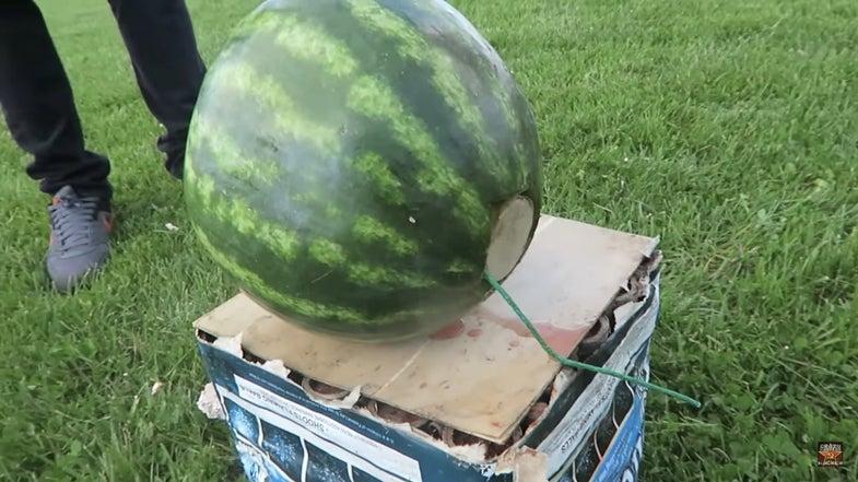 Watch A Mortar Blow Up A Watermelon
