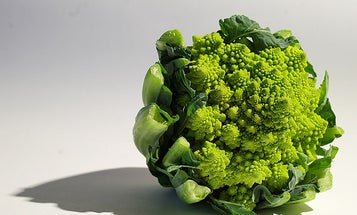 Veggies May Be the Key to Fighting Cancer
