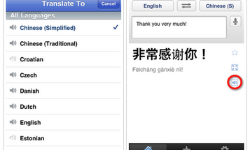 Google Translate Hits the iPhone App Store