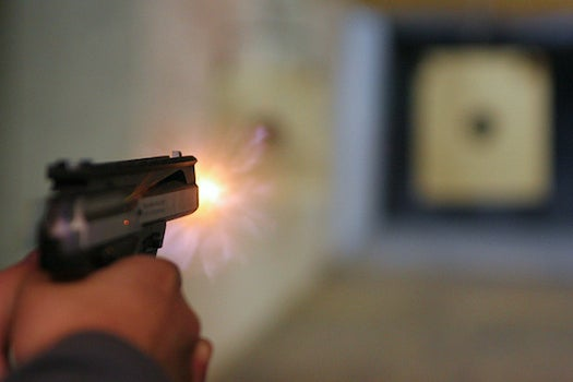 A Pollen Coating Could Help Identify Who Fired a Bullet