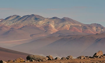Chilean Fog Nets Pull Beer From Desert Air