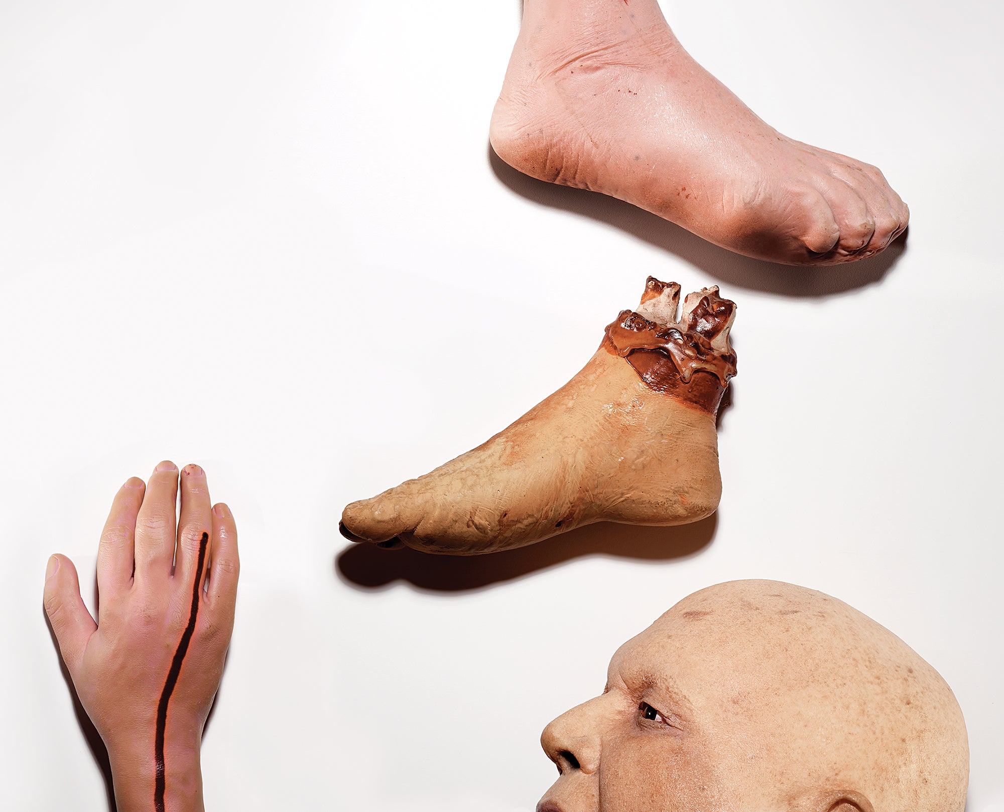 What Happens When You Donate Your Body To Science?