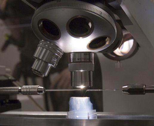 Citizen Scientist May Be First to Have Found First Interstellar Dust