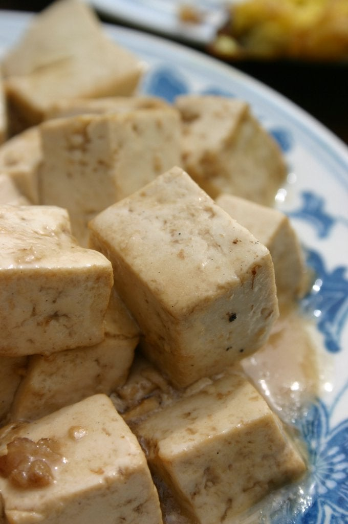 For the Love of Tofu