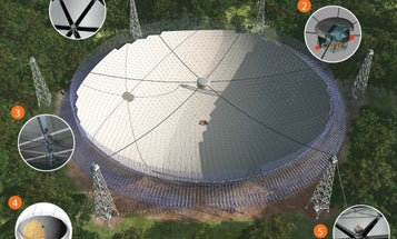 The Largest Telescope Dish