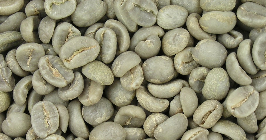 Green Coffee Bean Extract Probably Won't Help You Lose Weight