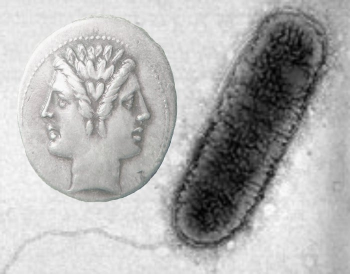 The Case of the Janus-Faced Microbial Genus