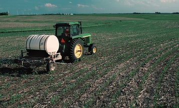After Years of Herbicide Use, Roundup-Resistant Superweeds Are Evolving to Invade U.S. Fields