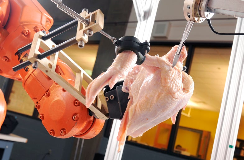 PopSci Q&A: A Robot Masters the Art of Chicken Deboning