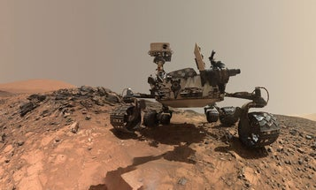 What Happens If the Curiosity Rover Finds Life on Mars?