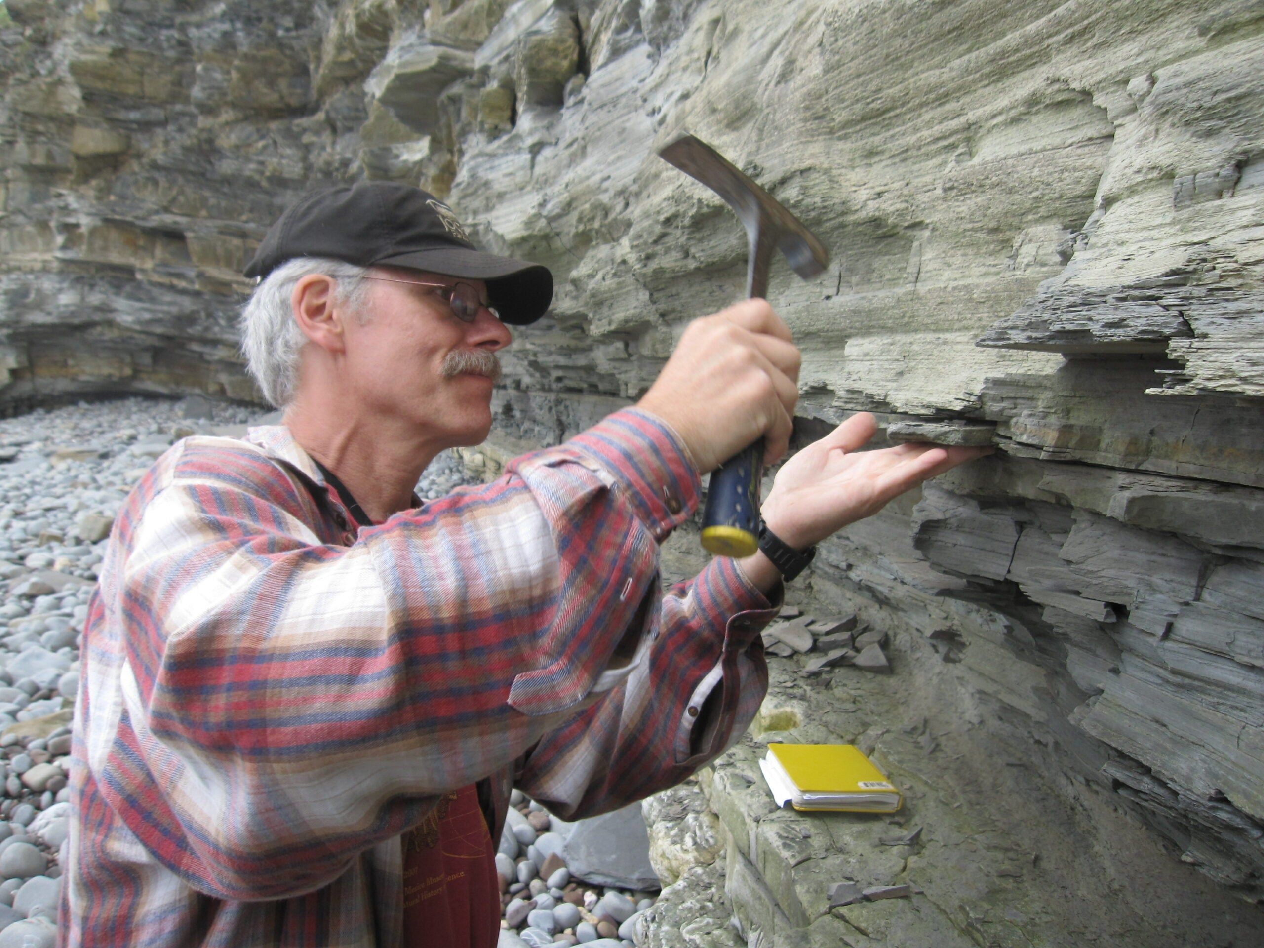 Huge Volcano Eruptions May Have Caused The Die-Off That Paved The Way For Dino Domination