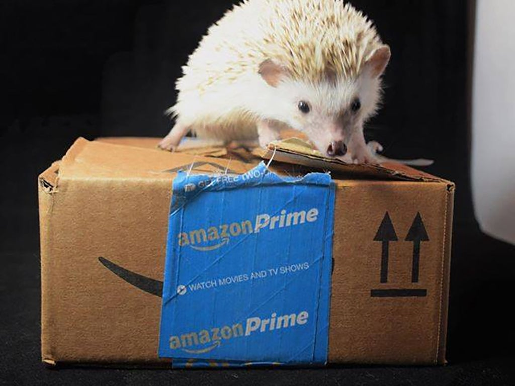 20 Amazon tips to save you time and money