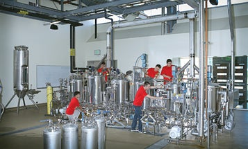 Brew the World's Best Beer at the University of California at Davis's Pilot Brewery